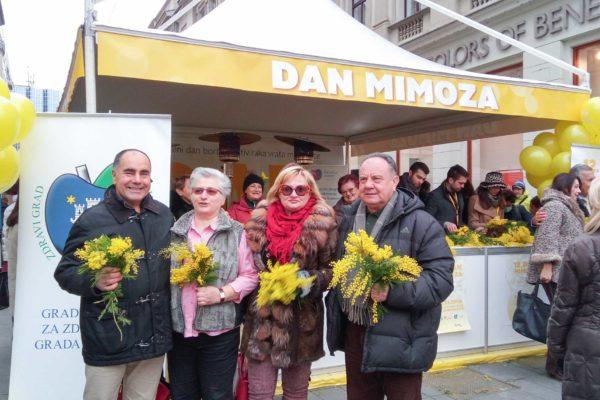 Dan mimoza